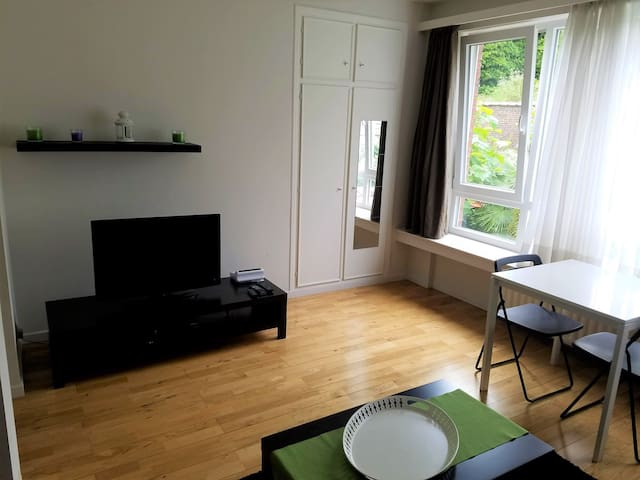 Cozy, lighted, studio apart . Centrally located.