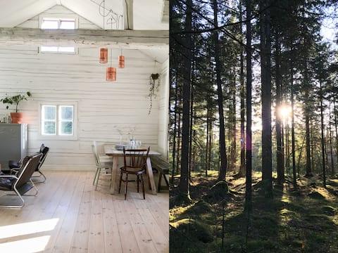 Klassiek rood Zweeds huisje