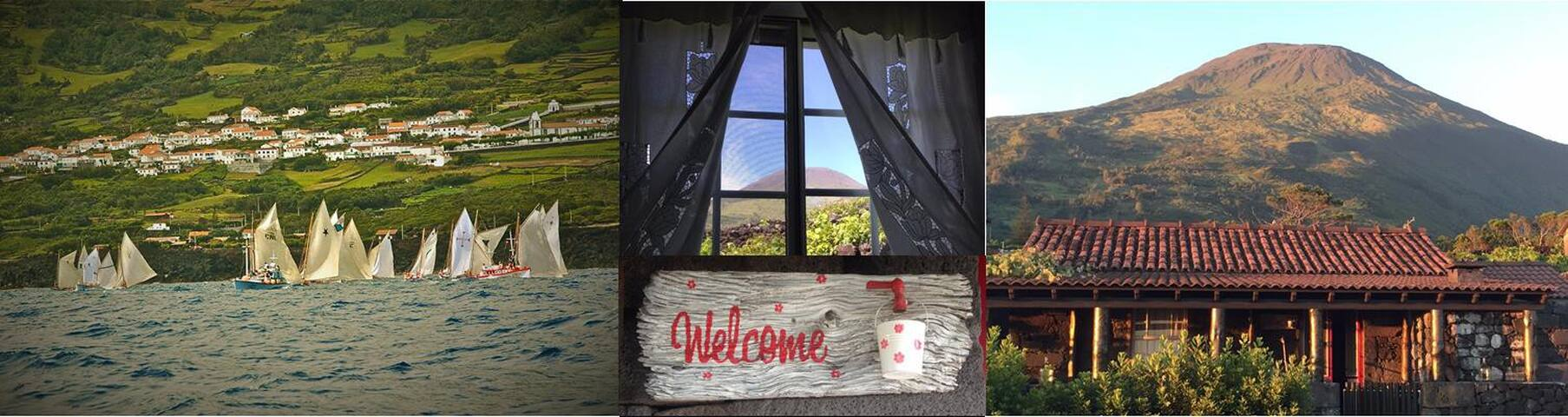 ADEGA JB (Wine House) - Accommodation