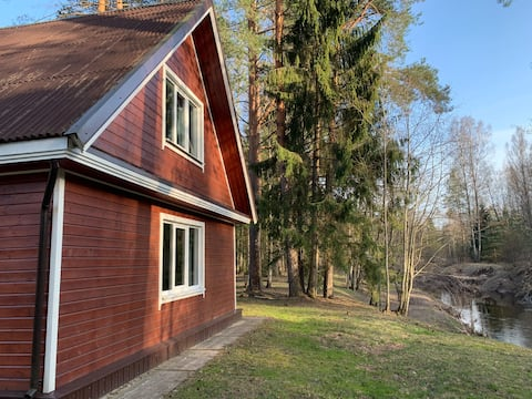 Cottage in pine tree forest. Sauna, fishing, grill.