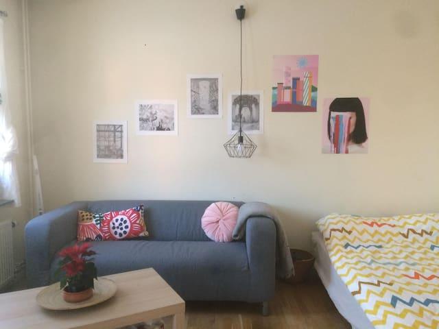 Entire apt/studio in Norra Djurgården