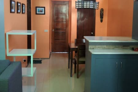 Chic fully-furnished flat on budget - Iloilo City - Wohnung