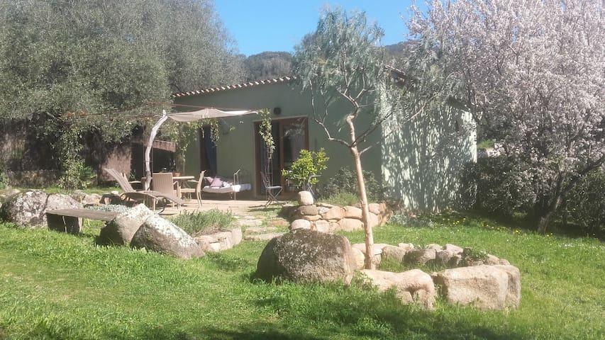 Mini villa plage à 200 mètres - Olmeto - Casa