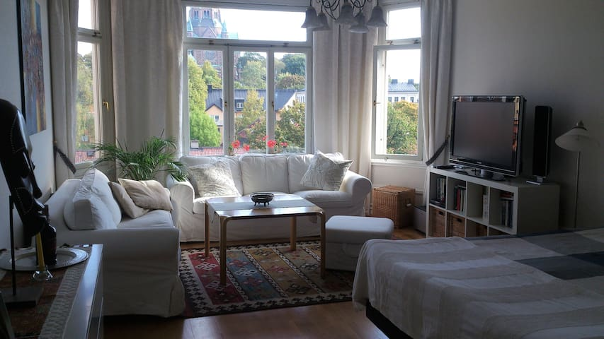 Nytorget 50 m2 with astonishing view and privacy