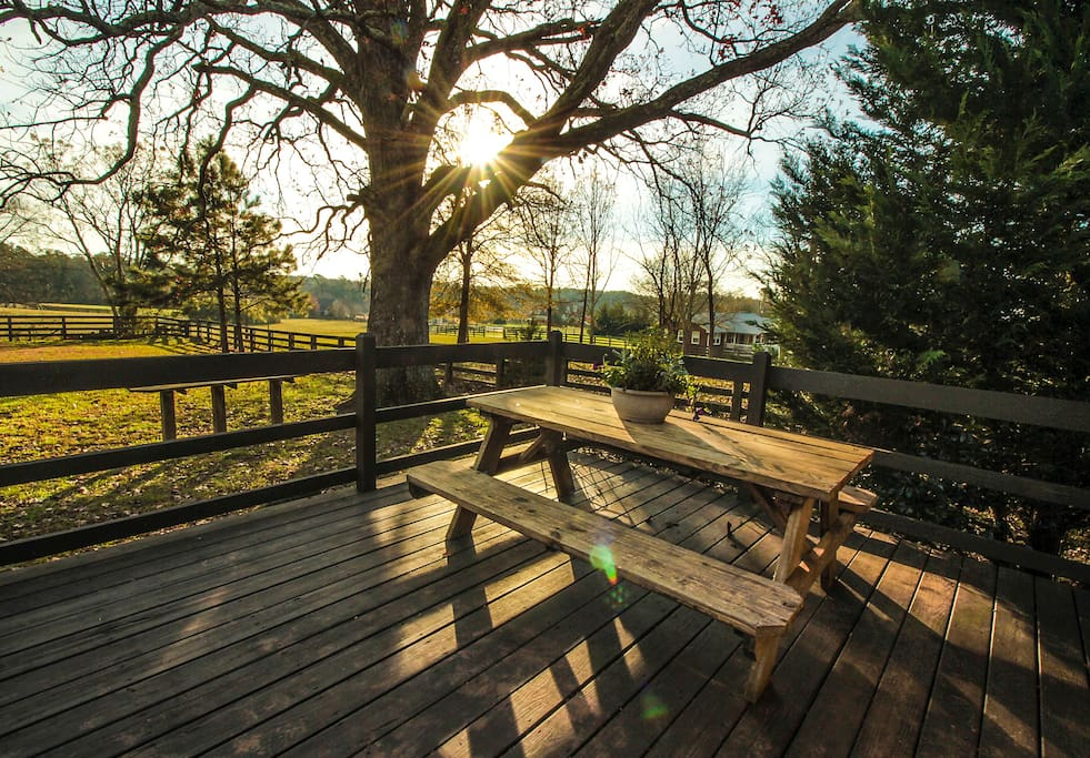 Enjoy a cup of coffee or dine on the back deck and relax with nature