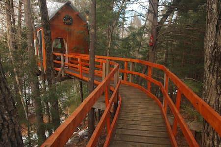 Treetop Sanctuary - Dunbarton