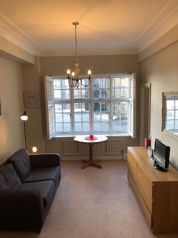 Beautiful Apartment in the heart of Marylebone