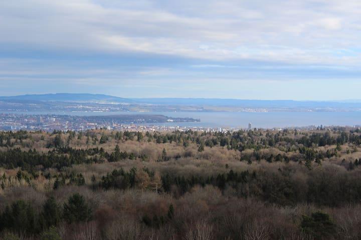 Blick vom Napoleonturm (Wäldi) Richtung Bodensee - ca. 10 Minuten Fahrt von unserem Studio
