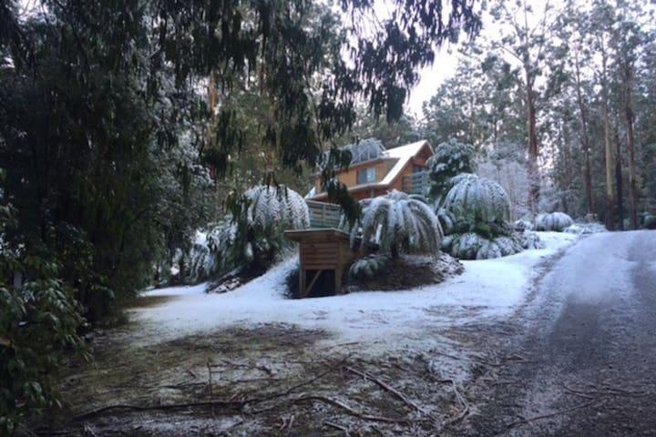 Tanjil Bren mountain cabin