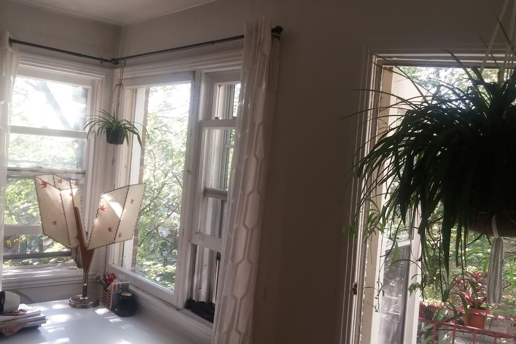 Living room/ Work Desk