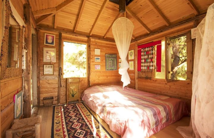 Treehouse treetop room near Fethiye  Turkey