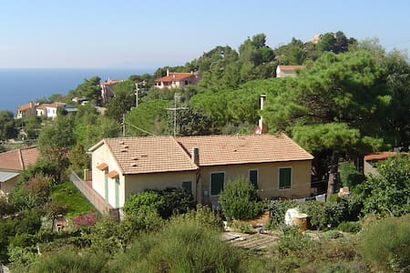 Apartment with Mediterranean garden - Apartment Il Timo