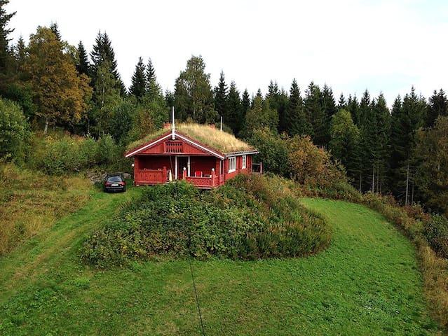 Hytte med utsikt fra år 1901. - Biri