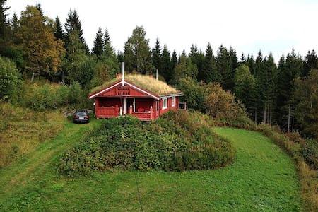 Hytte med utsikt fra år 1901. - Biri - Hytte