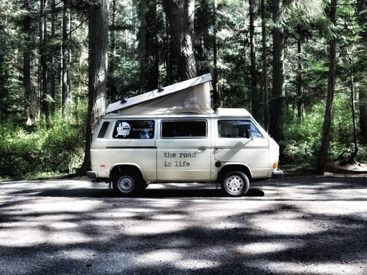 VW Vanagon Westfalia Campervan Rental