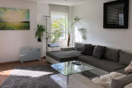 Moderne große Wohnung mit Sonnenterrasse