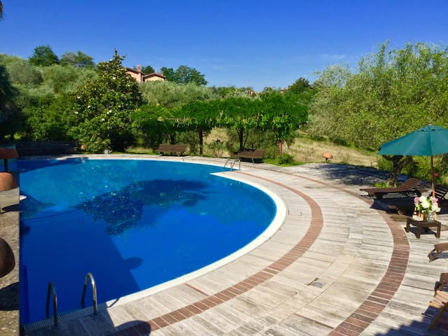 Charming house with swimming pool near Rome