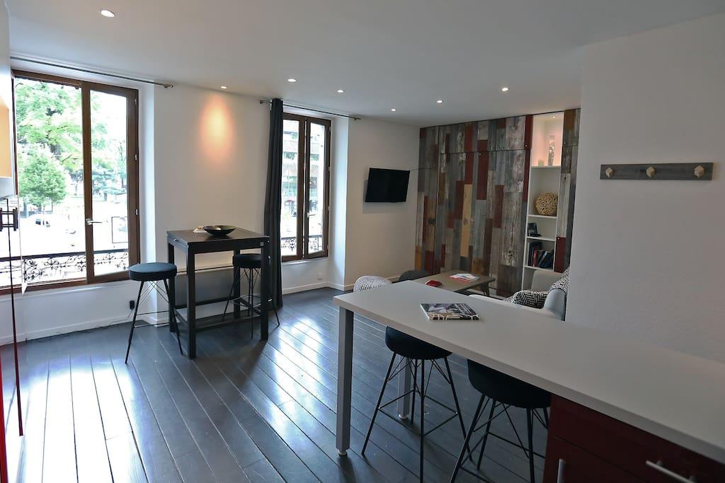La pièce de vie, grande et lumineuse - The wide and bright main room of the apartment