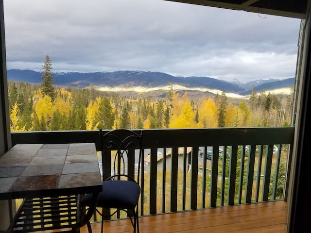Remodeled Summit County 2Br/2Ba Ski Condo - Silverthorne - Apartment
