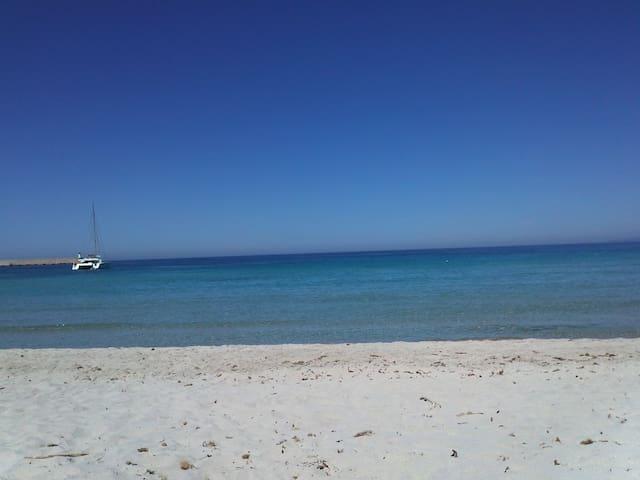 La Corse, la plage, la mer turquois - Poggio Mezzana - Hus
