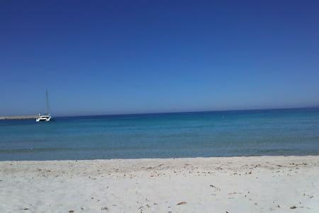 La Corse, la plage, la mer turquois - Poggio Mezzana