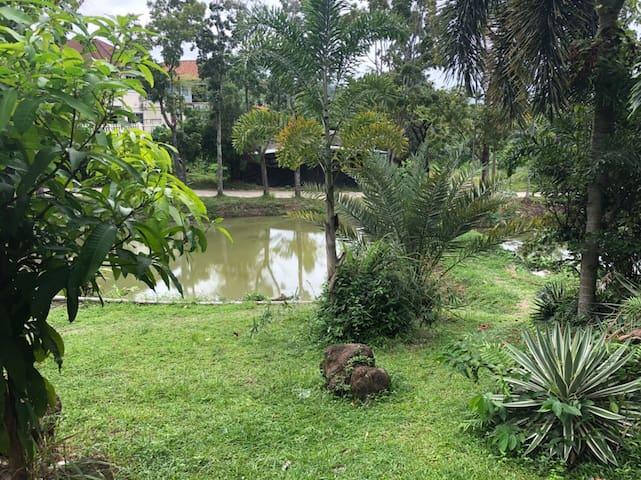 Peaceful vacation house near Patong beach.