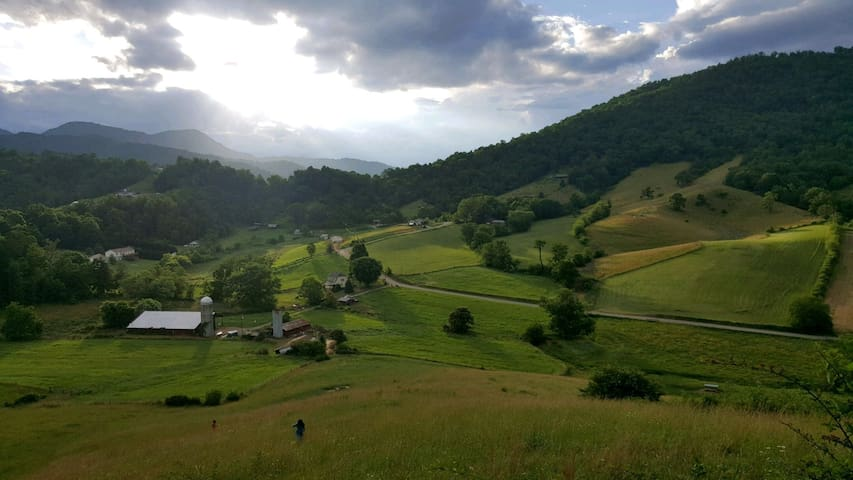 Provençal Farm Experience at Mount Gilead Farm