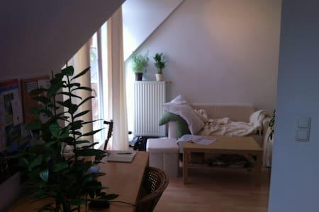 Helle Wohnung mit Balkon im Franzosenviertel - München