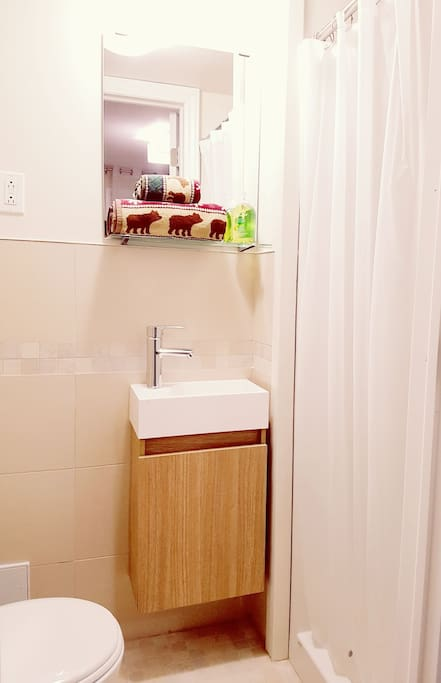 The lovely bathroom and all the essentials (towels, soap, shampoo, body wash, first aid-kit, hair-dryer, etc.)