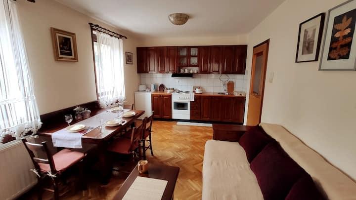 Apartman Ela u centru Zlatibora