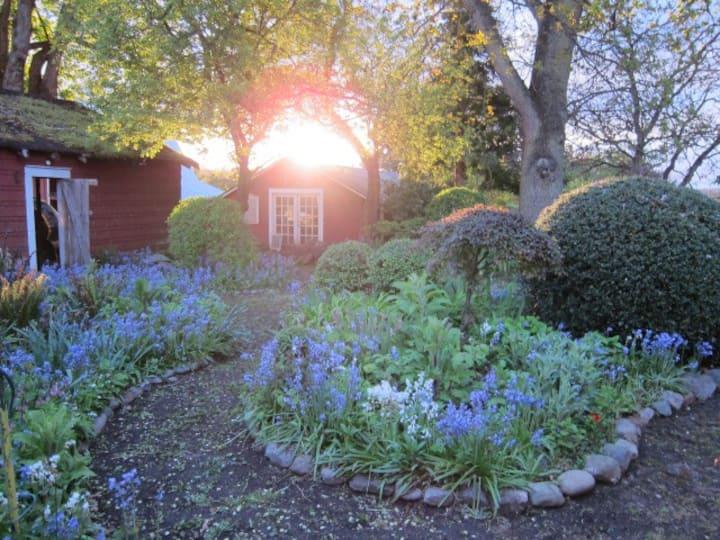 Enchanted Island Cottage