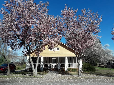 Historic Home near Callaway Gardens (B)