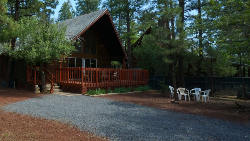 Cozy Lodge Style Rustic Cabin-Completely fenced!