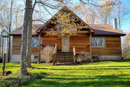 Peaceful Cabin, 50 Acres Close to Cherry Springs