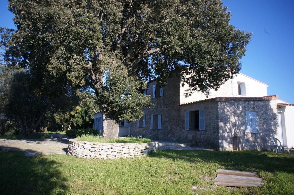 Ciappili 2018 (mit Fotos): Top 20 Ferienwohnungen In Ciappili,  Ferienhäuser, Unterkünfte U0026 Apartments U2013 Airbnb Ciappili, Corse, Frankreich