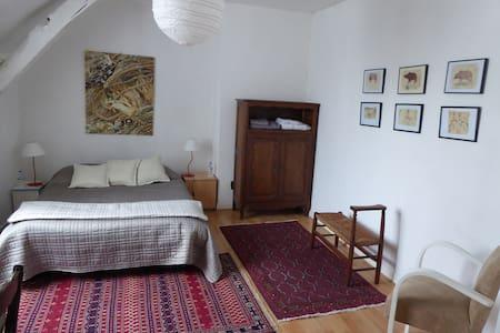 Chambre d'hôtes dans maison de charme - Briollay