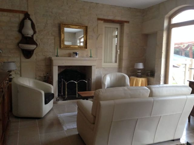 1st level - Living room + fireplace