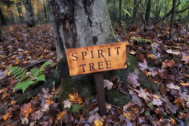 The Spirit Tree is back in the Spiritual Essence Center.
