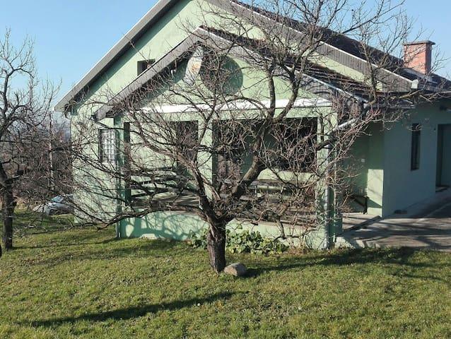 """Big house """"DunjAnja"""" in Banoštor charming village."""