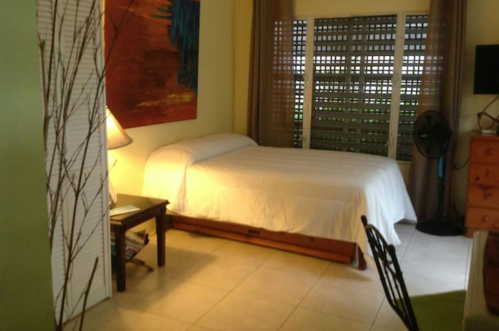 Hideaway Studio with Beautiful Courtyard - Kingston 6 - Apartamento