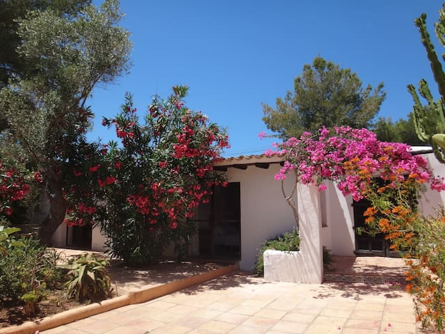 Private guesthouse on Ibiza Finca 2