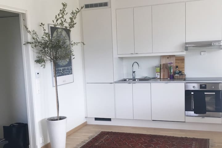 Modern 2rooms apartment near beach and city center - Hamar - Wohnung