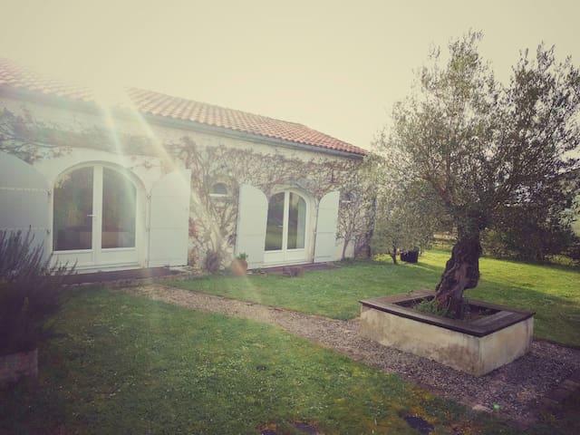 Deux chambres au calme dans la campagne rochelaise - Virson - Bed & Breakfast