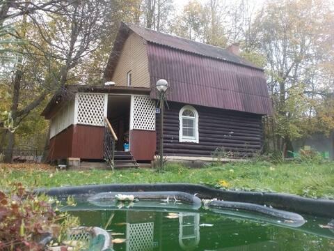 Русский дом в лесу