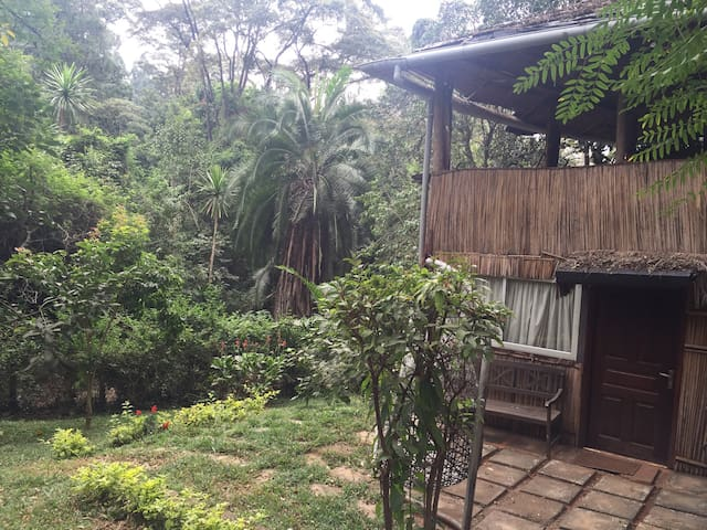 Gorgeous tree house in westlands