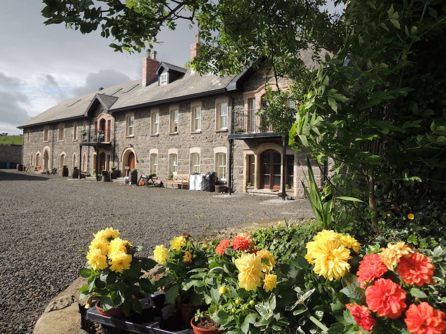 Coleraine Rooms To Rent