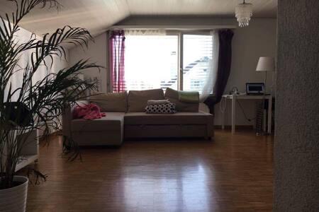 Appartement - Widnau - Apartment