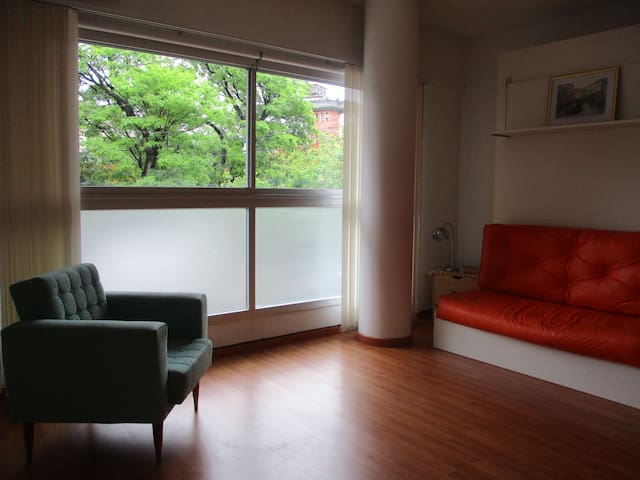 Chacarita modern and bright Studio - Buenos Aires - Apartment