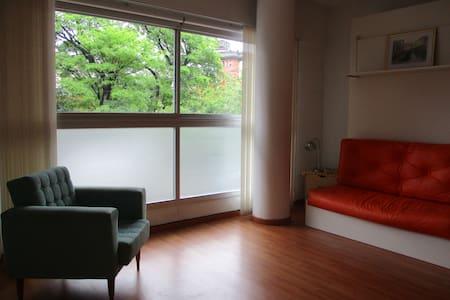 Chacarita modern and bright Studio - 布宜諾斯艾利斯 - 公寓