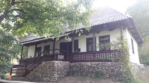 Traditional House in Maramures, Tara Lapusului